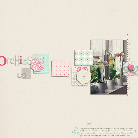 Orchids-470
